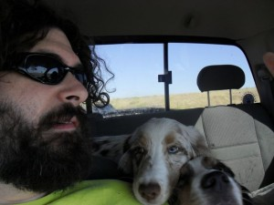 be3n traveling with dogs
